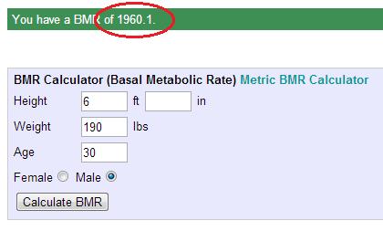 bmr result