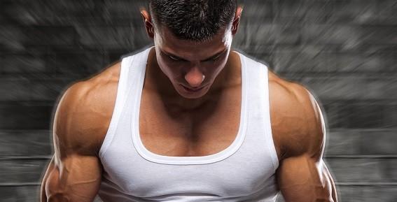 My Exercise Program for Building Big Shoulders Fast