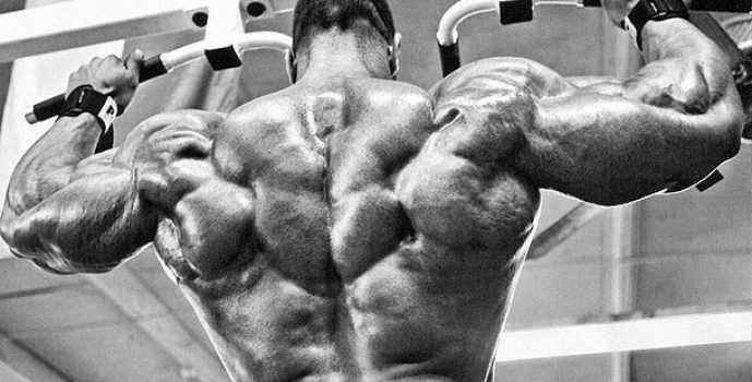 Chest And Back Superset Workout Routine For Huge Mass Gains