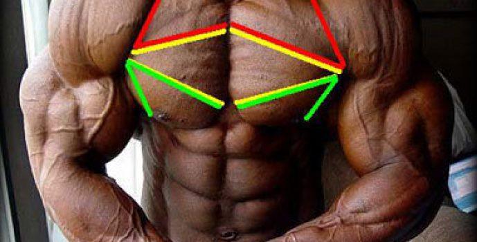 Best Upper Chest Exercises For Men