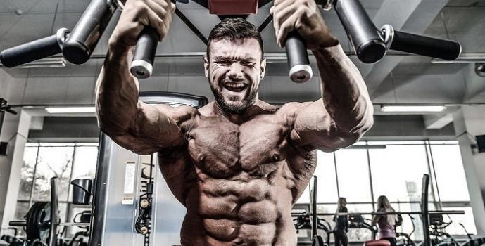 Building Muscle Machines Vs Free Weights