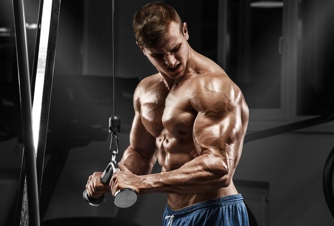 Try These Best Mass Building Exercises for Bigger Arms