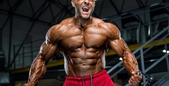 how do i lose body fat without losing muscle