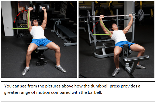 dumbbell bench vs barbell bench weight