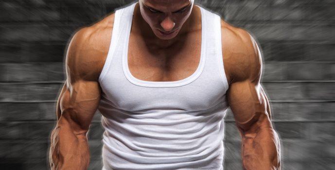 Best Shoulder Exercises – Ultimate Shoulder Workout for Big Delts ...