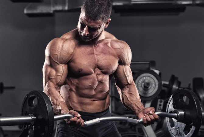 bodybuilding and healthy oils