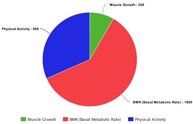 How Many Calories Daily To Build Muscle Mass Calculator